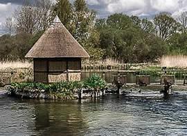 River Test Eel Pot Bridge Chalk Stream Trout Fishing