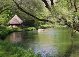 River Anton Chalk Stream Fly Fishing